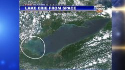 algae-lake-erie-toledo-water-crisis