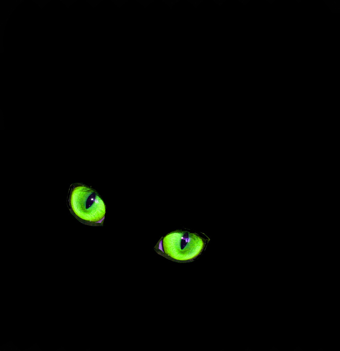 why do animal eyes glow green Why do animal eyes glow green when i've always wondered what the reason for animal's eyes glowing under a fluorescent light was and never would have thought.
