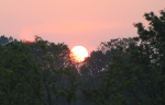 Sunrise_at_Leslie_Park_Ann_Arbor_Michigan