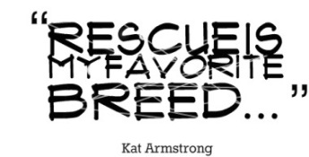 rescue-is-my-favorite-breed-animal-quote
