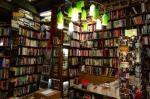 molly-bookshop