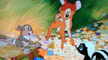 _93200448_bambi